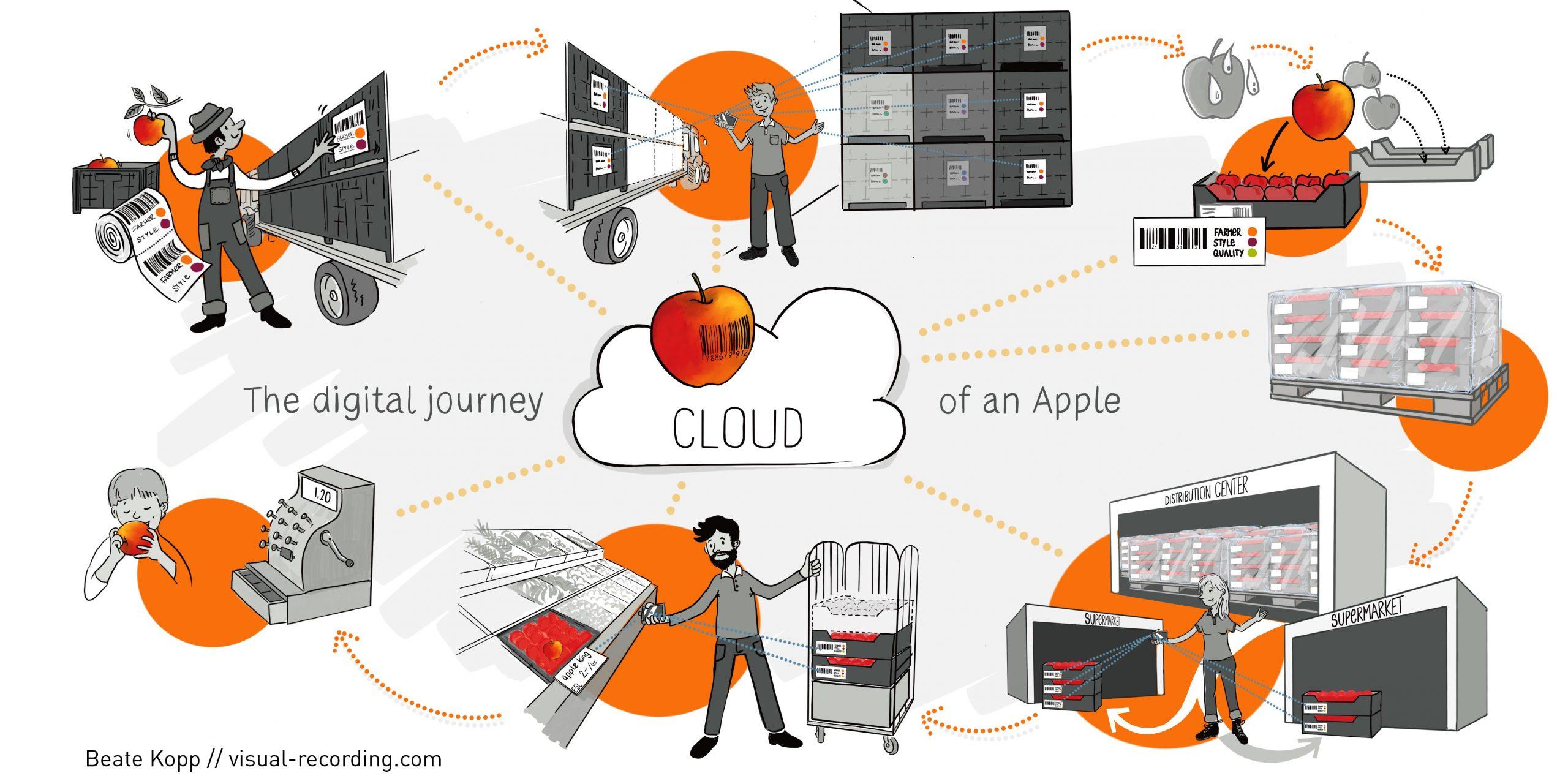 Infografik digitale Reise eines Apfels